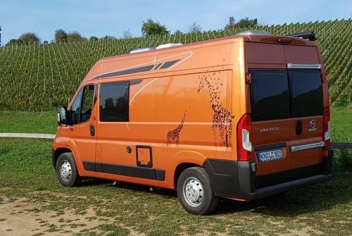 Buscamper Poessl Terra in Gailingen am Hochrhein huren van particulier