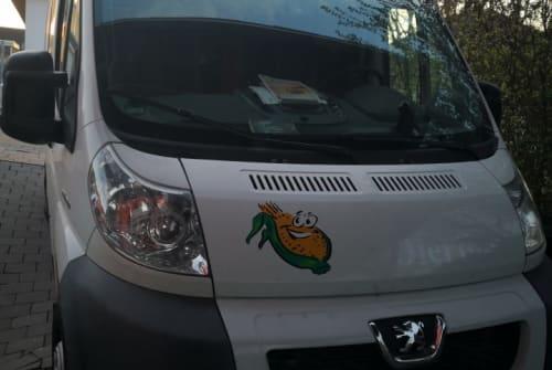 Buscamper Peugeot Boxer Ferdinand in Frankfurt am Main huren van particulier