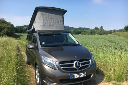 Kampeerbus Mercedes Marco Polo  in Elze huren van particulier