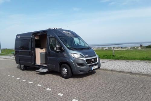 Buscamper Pössl Roadcar Automatik Black Sauser in Hemsbach huren van particulier