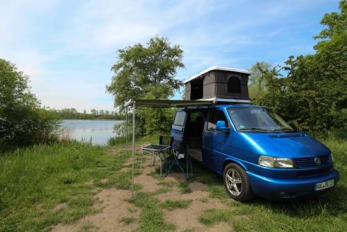 Kampeerbus Volkswagen Blau Bär in Halle huren van particulier
