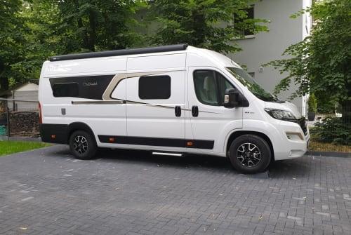 Buscamper Carado  640_Luxus in Dallgow-Döberitz huren van particulier