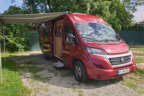 Buscamper Weinsberg Duetto in Waldshut-Tiengen huren van particulier