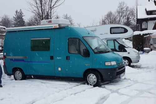 Buscamper Peugeot/Citroen Egon in Nürnberg huren van particulier