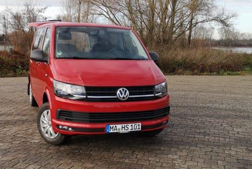 Kampeerbus VW Red Bully in Mannheim huren van particulier