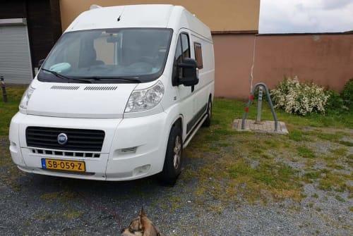 Buscamper Fiat Duke in Almere huren van particulier