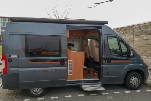 Buscamper Fiat Ducato De Buscamper in Delft huren van particulier