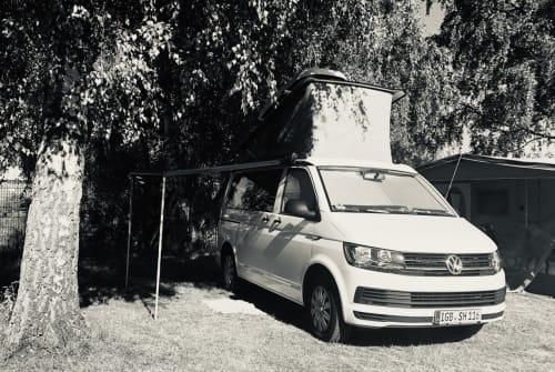 Kampeerbus VW HotelCalifornia in St. Ingbert huren van particulier