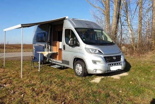 Buscamper Fiat  Knuddl in Pirna huren van particulier