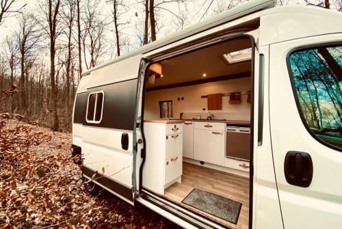 Buscamper Fiat DIY Campervan  in Neustadt an der Weinstraße huren van particulier