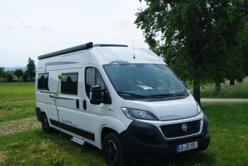 Buscamper Pössl Summer Summit in Sachsenheim huren van particulier