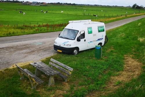 Buscamper Fiat ducato Suzi in Amsterdam huren van particulier
