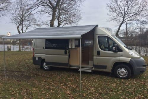 Buscamper Fiat Ducato Freeminder in Breda huren van particulier