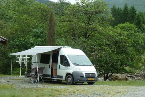 Buscamper Fiat COMPACTE BUS in Amstelveen huren van particulier