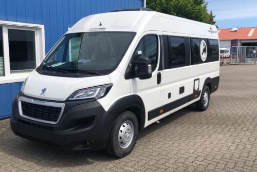 Buscamper Knaus Kiwis Dogsmobil in Ellingstedt huren van particulier