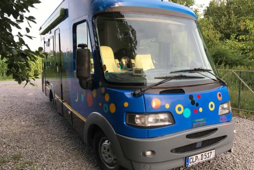 Integraal Fiat Ducato  Zoo in Essen (Oldenburg) huren van particulier