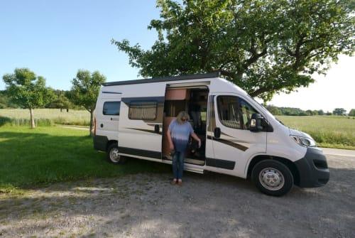 Buscamper Knaus Ritzi in Karlsruhe huren van particulier