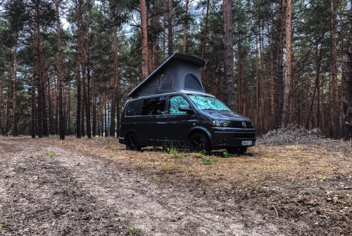 Kampeerbus Volkswagen  VANactive 101 in Salzwedel huren van particulier
