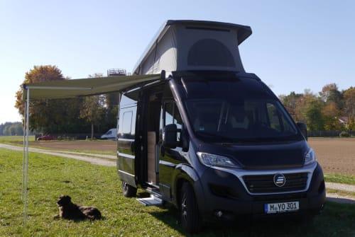 Buscamper HymerCar Yo in München huren van particulier